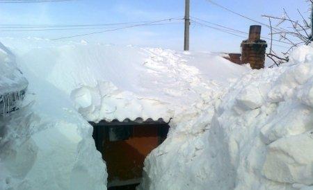 Guvernul dă 20 de milioane lei pentru sinistraţii din judeţele afectate de ninsori