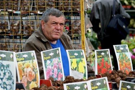Amenzi de 43.000 de lei şi 80.000 de fire de flori confiscate în urma unei razii în Piaţa George Coşbuc