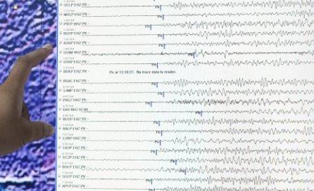 Un cutremur de 5,6 grade a lovit sudul Japoniei, în această dimineaţă