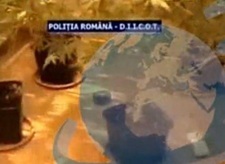 Un militar român în Afganistan este judecat pentru deţinere de cannabis