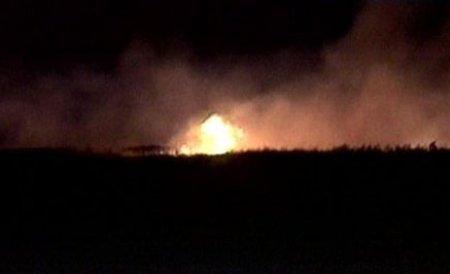 Incendiu în zona Rezervaţiei Biosfera Delta Dunării: 20 de hectare sunt cuprinse de flăcări