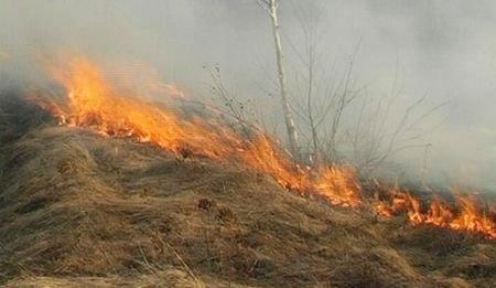 Fermierii care dau foc la mirişte ca să-şi cureţe terenurile pierd subvenţiile de la stat