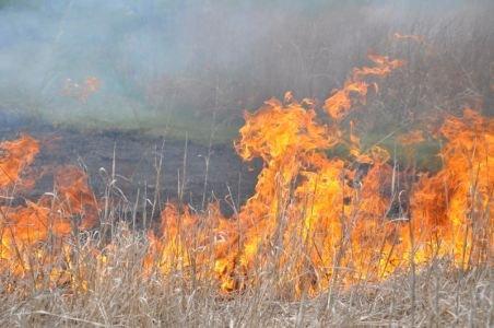 Alba: O femeie a decedat într-un incendiu pe care l-a provocat singură pentru igienizarea unui teren
