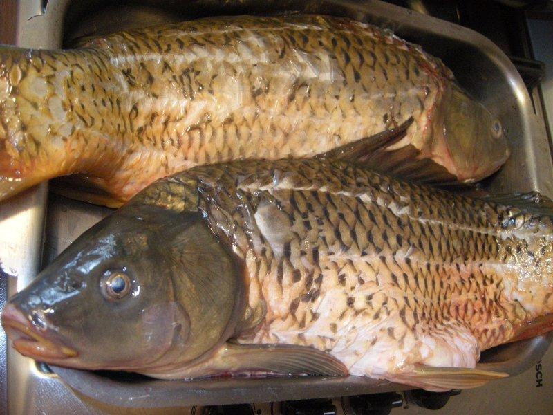 Duminică este dezlegare la peşte. Pieţele, târgurile şi pescăriile au fost pline