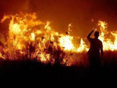 A ars de viu după ce a dat foc la vegetaţia uscată. Situaţia a scăpat de sub control, vântul a făcut intervenţia pompierilor un iad