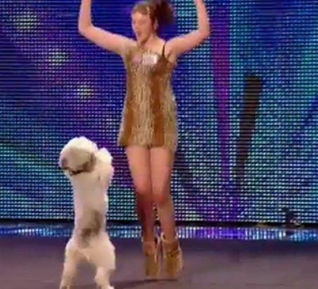 Faceţi cunoştinţă cu Pudsey, câinele dansator care i-a uimit pe britanici