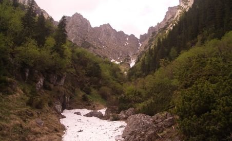 Un turist a fost luat de viitură, în Masivul Bucegi