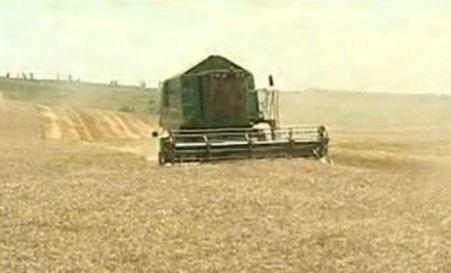 Cu un tractor şi câteva hectare de teren se pot scoate bani din pământ. Cum se îmbogăţesc fermierii