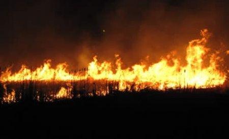 Incendii puternice de vegetaţie în Sardinia. Sute de turişti şi localnici au fost evacuaţi