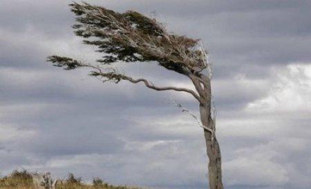 Avertizare de vânt puternic în estul Munteniei, pe litoral şi în Delta Dunării, până la ora 17.30