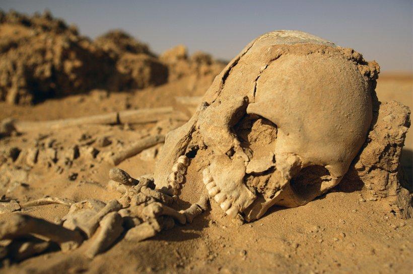 Descoperirea uluitoare dintr-un mormânt sucevean. Trupul neînsufleţit al unui tânăr de 20 de ani, păstrat vreme de 4 milenii