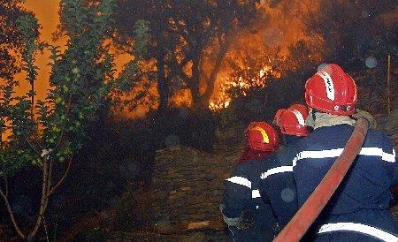 Incendiu de pădure în Munţii Rodnei. Focul a cuprins o suprafaţă de circa zece hectare