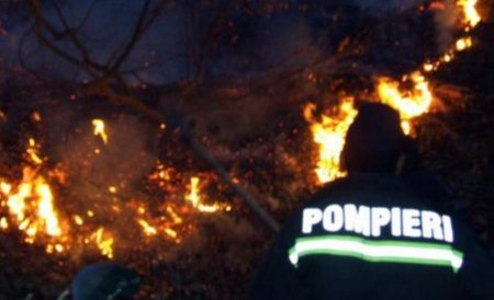 Incendiu de vegetaţie în Munţii Făgăraş. Peste 500 de hectare de vegetaţie, cuprinse de flăcări