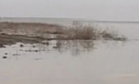 Poluare pe zeci de kilometri pe râul Jiu. Au fost aruncate resturi de carbune într-un pârâu din zonă
