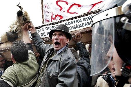 Fermierii ameninţă cu proteste, nemulţumiţi de valoarea subvenţiilor pentru 2013