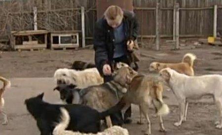 Primarul oraşului vasluian Negreşti este cercetat penal pentru cruzime faţă de animale