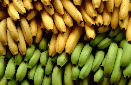 Efectele schimbărilor climatice. Bananele vor înlocui cartofii în statele în curs de dezvoltare