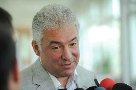 Adriean Videanu: Am votat pentru un viitor european al României