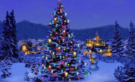 Luminile de Crăciun au fost aprinse la Bethleem, locul unde s-a născut Iisus