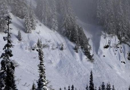 Trei salvamonţi austrieci au murit într-o avalanşă în Alpi