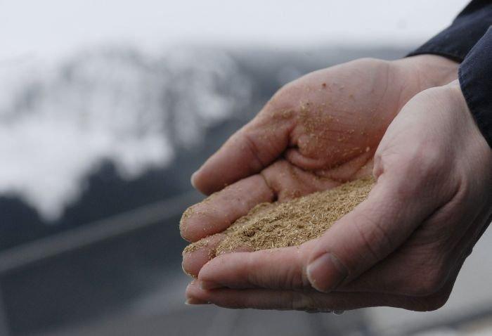 O berărie din Alaska ar putea economisi 450.000 de dolari pe energie cu ajutorul berii