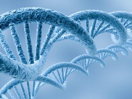"""Oamenii care au găsit """"elicea vieţii"""", cea mai importantă descoperire ştiinţifică a secolului XX"""