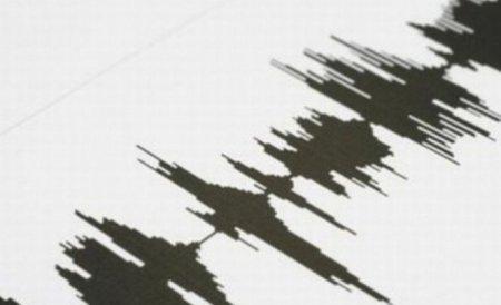 Cutremur în Vrancea, în această după-amiază. Ce intensitate a avut seismul