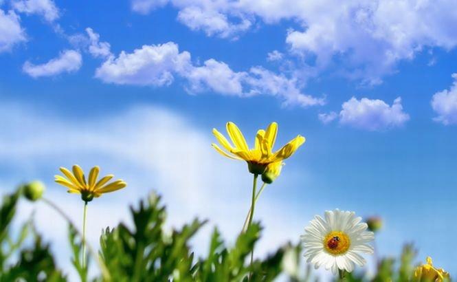 Cum va fi vremea pe 1 martie. Prognoza meteo pentru începutul primăverii, în fiecare regiune a ţării