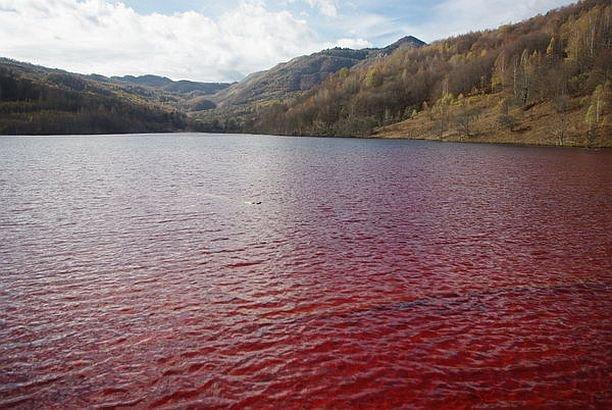 """Imaginea şocantă surprinsă în ROMÂNIA. """"Lacul de sânge"""" arată dezastrul la care suntem martori"""