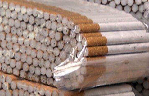 Mii de ţigări de contrabandă au fost găsite în curtea unui ieşean, la groapa de gunoi