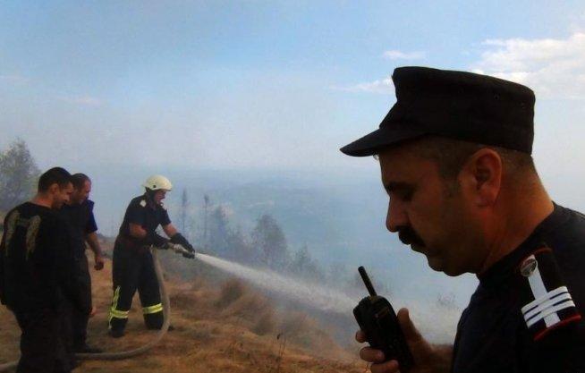 Patru hectare de păşune şi pădure, distruse într-un incendiu declanşat intenţionat