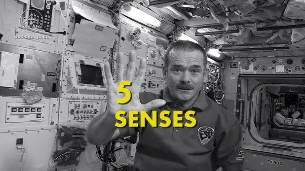 Vrei să afli cum te-ai simţi pe Staţia Spaţială? Vezi aici cum sunt afectate simţurile astronauţilor