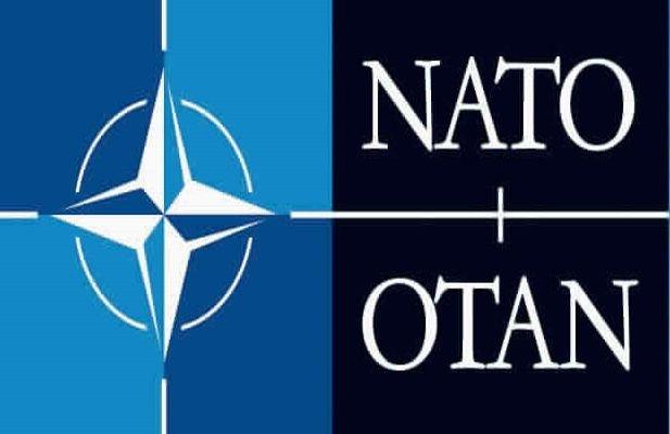 Sibiu: 30 de studenţi din mai multe ţări, la prima Şcoală NATO din România