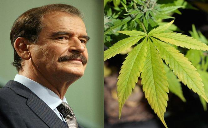 Fostul preşedinte mexican vrea să cultive...marijuana!