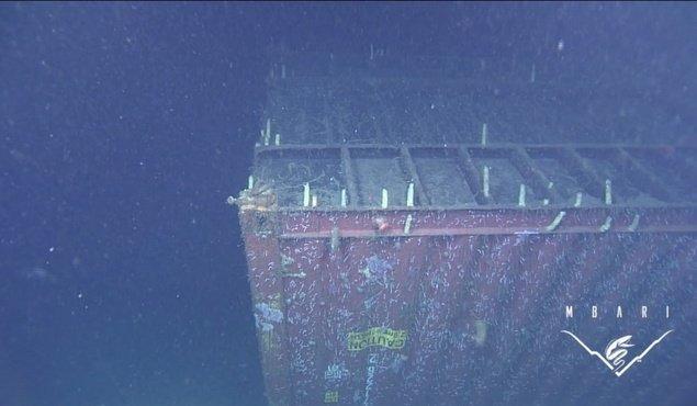 Imagini tulburătoare. Mii de ore de filmări surprind gunoiul pe care noi îl aruncăm în oceane