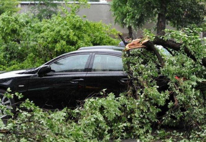 Proprietarii maşinilor avariate în timpul furtunii, în sectorul 6 al Capitalei, vor fi despăgubiţi de Primărie