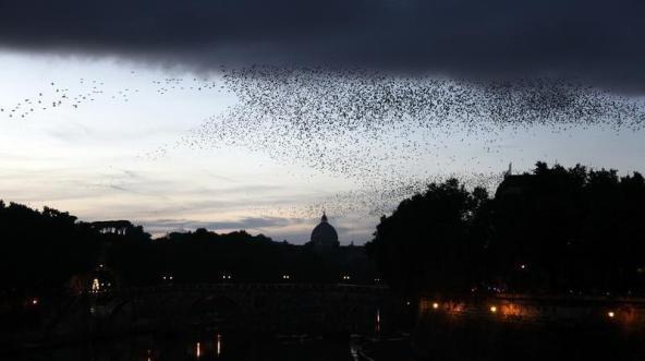 Oamenii sunt disperaţi. Ce se vede de trei zile deasupra Vaticanului şi Romei