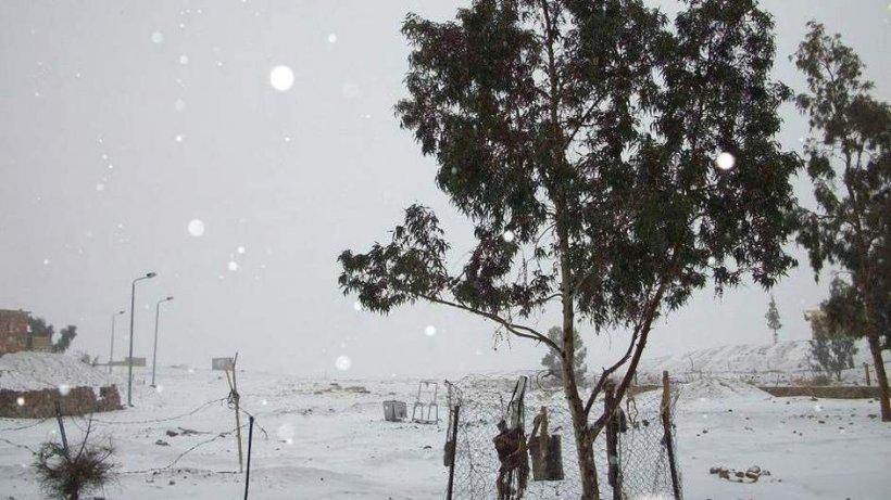 E iarnă în Egipt. Prima ninsoare în Cairo, după 112 ani