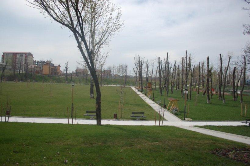 (P) Cu ajutorul programului Regio, oraşul Bragadiru este mai sigur, mai curat, mai frumos