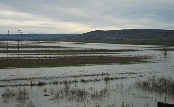 Inundaţiile au făcut prăpăd în nord-vestul Bulgariei