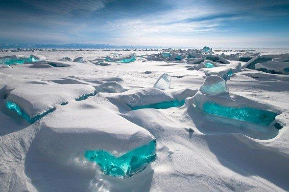 """Descoperire uimitoare în Rusia. """"Sunt vechi de 120 de milioane de ani şi sunt într-o stare perfectă"""""""