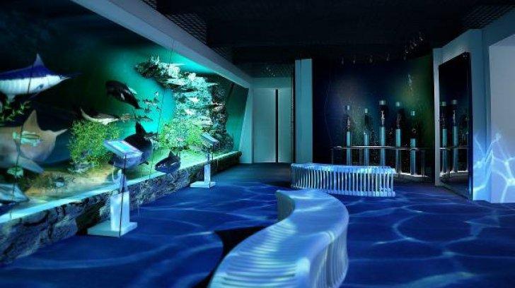 """Muzeul Antipa organizează programul pentru copii """"Aventura Dezvoltării"""""""