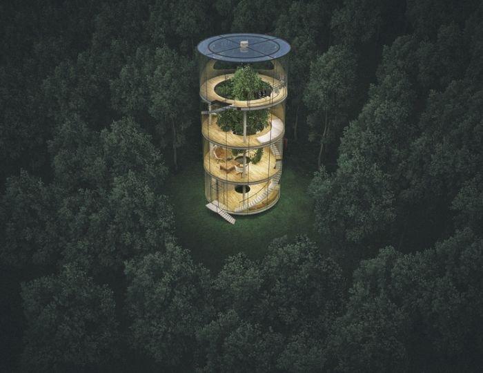 """Cum arată uluitoarea casă de sticlă construită în jurul unui copac. """"Suntem ascunşi în mijlocul pădurii"""""""