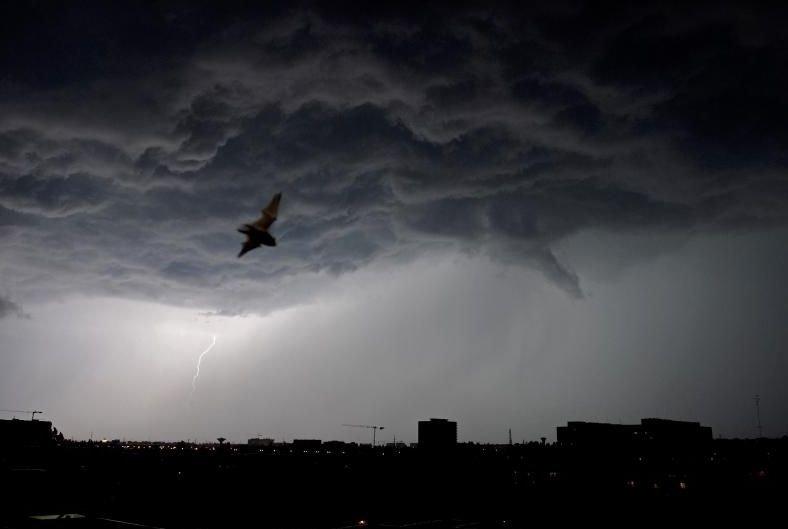 COD GALBEN de vijelii şi ploi în Bucureşti