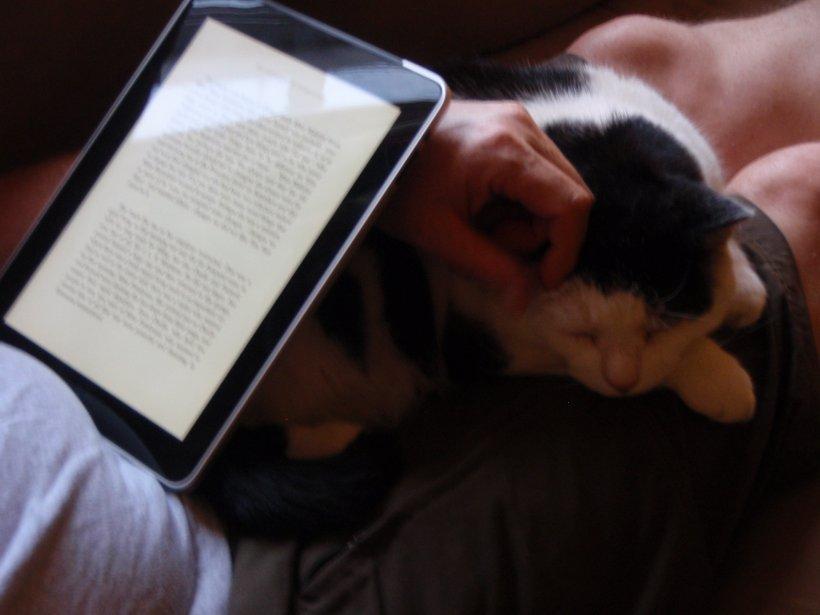 """Ce se întâmplă atunci când citeşti cărţile pe iPad. """"Rezultatul studiului a fost neaşteptat"""""""