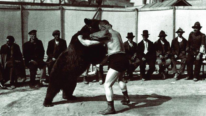 O istorie a circului românesc: De la pehlivani la acrobaţi