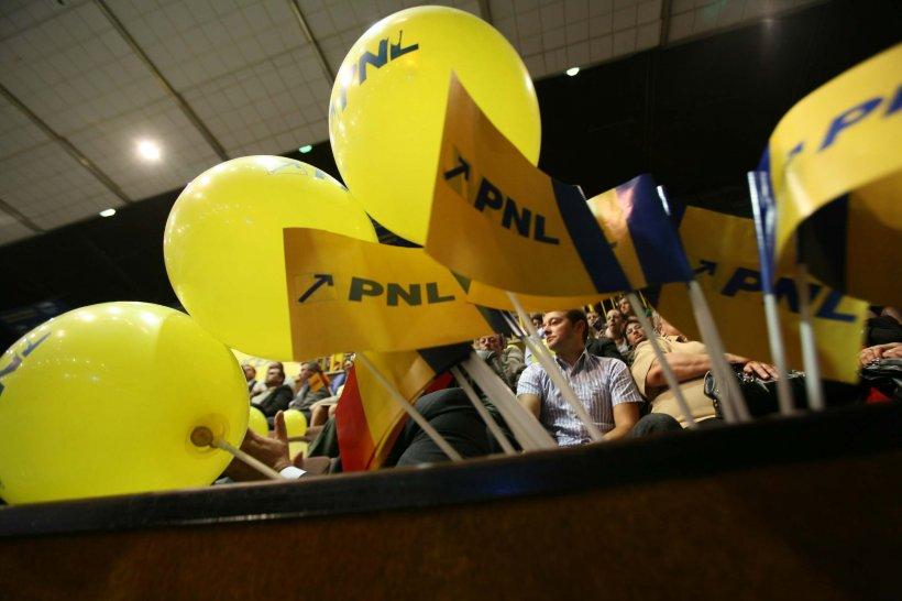 Ţurcanu şi Benchescu, următorii pe lista PNL pentru PE în cazul validării lui Hellvig la SRI