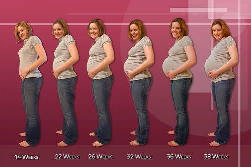 Ce transformări se produc în corpul tău în prima săptămână de sarcină