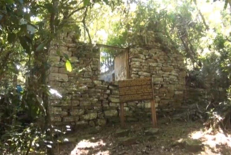 """Descoperirea arheologilor, în inima junglei argentiniene: """"Aici plănuiau să se ascundă cei mai mari lideri nazişti"""""""