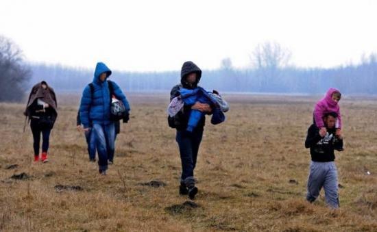 Mii de moldoveni, turci şi chinezi au venit legal în România. Câţi au venit ilegal